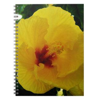 Gul hibiskus Hawaii Anteckningsbok Med Spiral