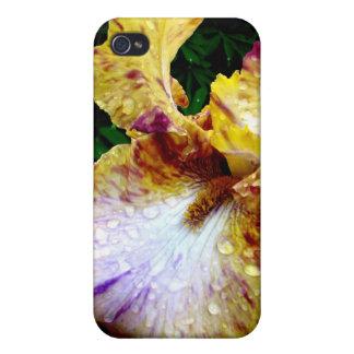 Gul Iris iPhone 4 Hud