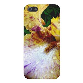 Gul Iris iPhone 5 Skal