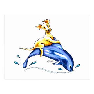 Gul lab delfinritt vykort