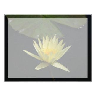 Gul lotusblommanäckrosblomma brevhuvud