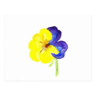 Gul och mauve pansy för härlig vattenfärg vykort