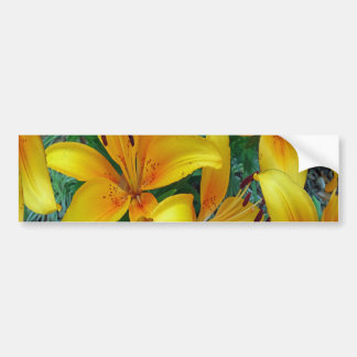 gul och orange lilja bildekal