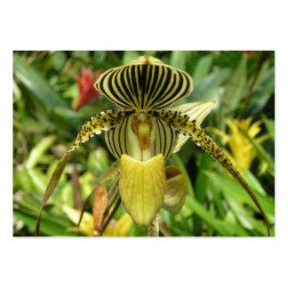 Gul Orchidblommakortkort fick- calandar 2011 Set Av Breda Visitkort