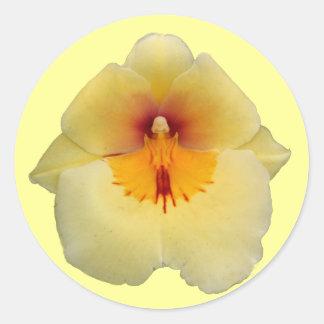 Gul Orchidklistermärke Runt Klistermärke