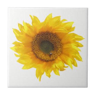 gul solros kakelplatta