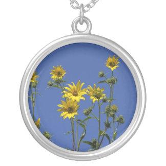 Gula daisy, halsband