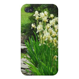 Gula Irises iPhone 4 Fodraler