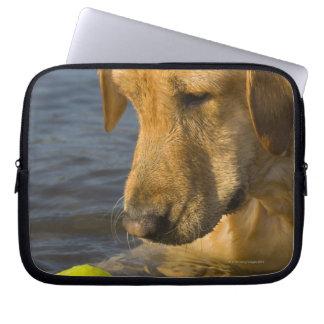 Gula labrador med en tennisboll i vatten laptop fodral