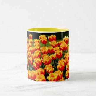 Gula och röda tulpan i springtime Två-Tonad mugg