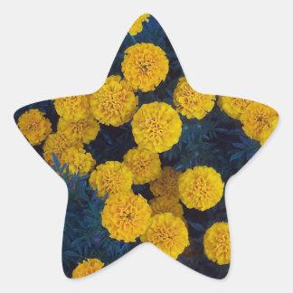 Gula ringblommar stjärnformat klistermärke