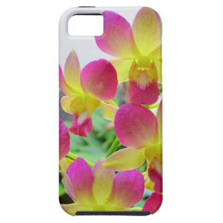 Gula rosa Orchids iPhone 5 Fodral