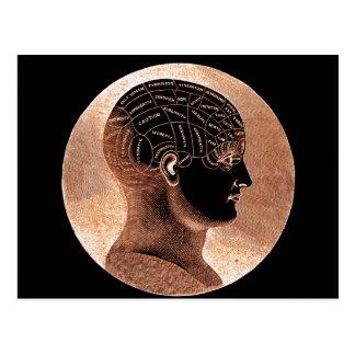 Guld- antik stil varar besvärad Phrenologyhuvudet Vykort