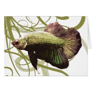 Guld- Betta Siamese stridighetfisk Hälsningskort
