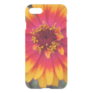 Guld- gul orange Zinniablomma iPhone 7 Skal