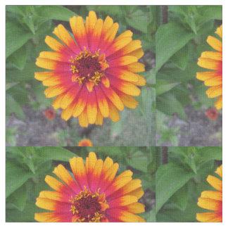Guld- gul orange Zinniablomma Tyg