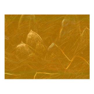 Guld n förkopprar lakan:  Lotusblomma inristad Vykort