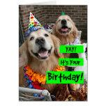 Guld- Retriever Yay dess din födelsedag Hälsningskort