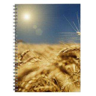 Guld- vete och blå himmel med solen anteckningsbok med spiral