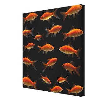 Guldfisk 3 canvastryck