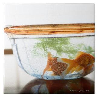 Guldfiskskål Kakelplatta