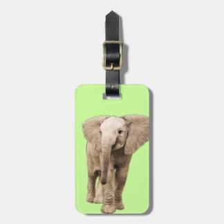 Gullig babyelefant bagagebricka