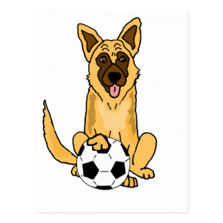 Gullig belgareMalinois hund som leker Vykort