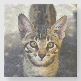 Gullig Bengal kattunge Underlägg Sten