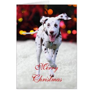 Gullig beställnings- julkort för Dalmatian Hälsningskort