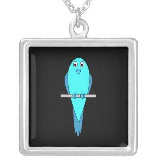 Gullig blåttfågel. Parakiter. Svart Silverpläterat Halsband
