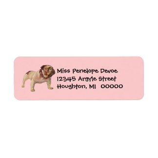 Gullig bulldoggBullie returetiketter Returadress Etikett