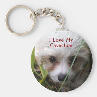 Gullig Cavachon valp Keychain Rund Nyckelring
