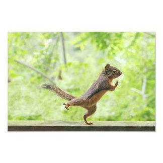 Gullig ekorre som gör Tai-Chi Fotokonst