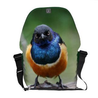 Gullig fotografi för djurliv för blåsångarefoto | messenger bag