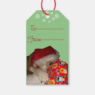 Gullig gåva för jul för öppning för akita presentetikett