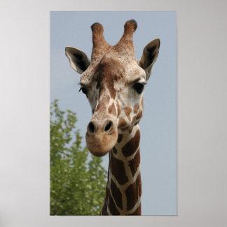 Gullig giraff poster