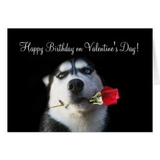 Gullig Husky hundgrattis på födelsedagen på Hälsningskort