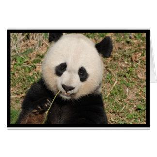 Gullig jätte- Pandabjörn Hälsningskort