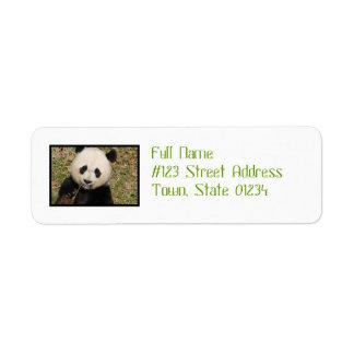 Gullig jätte- Pandabjörn Returadress Etikett