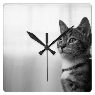 Gullig katt fyrkantig klocka