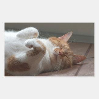 Gullig katt som sovar rektangelklistermärkear rektangulärt klistermärke