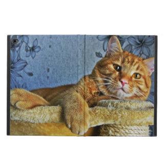 Gullig kattunge powis iPad air 2 skal