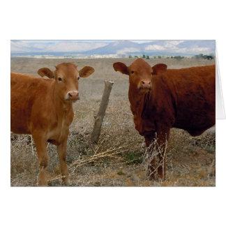 Gullig lantgård DVM för ranch för Hälsningskort