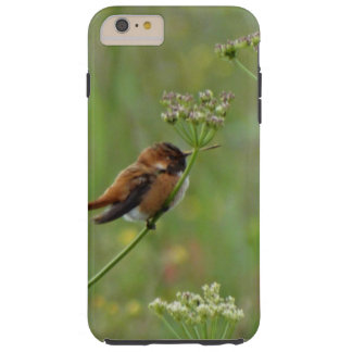 Gullig lite Hummingbird Tough iPhone 6 Plus Skal