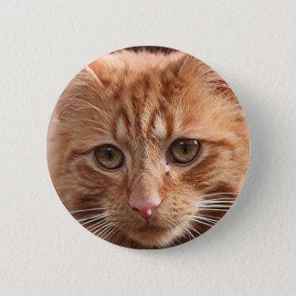 Gullig ljust rödbrun katt standard knapp rund 5.7 cm