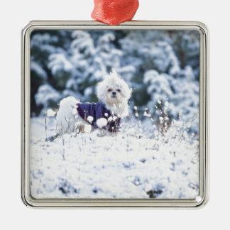 Gullig maltesisk hund julgransprydnad metall
