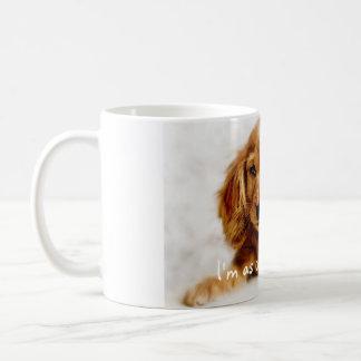 Gullig mugg/kopp för cockerspanielSpanielhund Kaffemugg