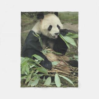 Gullig Pandabjörn som äter lövullfilten Fleecefilt
