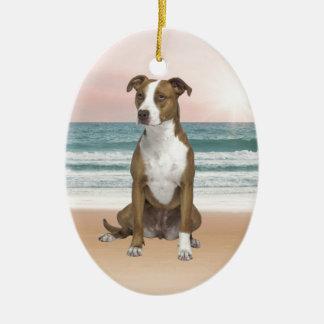 Gullig Pitbull hundsitta på strand med solnedgång Julgransprydnad Keramik