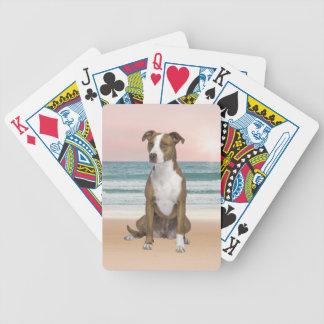 Gullig Pitbull hundsitta på strand med solnedgång Spelkort